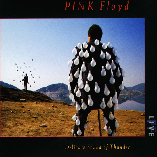 Pink Floyd - Delicate Sound Of Thunder. (2xCD, Album, RE, RM, Car)